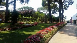 sorrento garden view