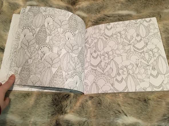 Animal Kingdom Colouring Book Inside